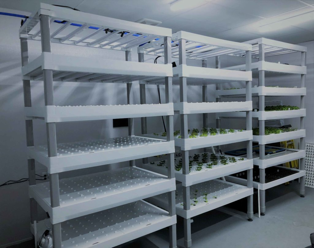 Vertical farm full operating growing racks