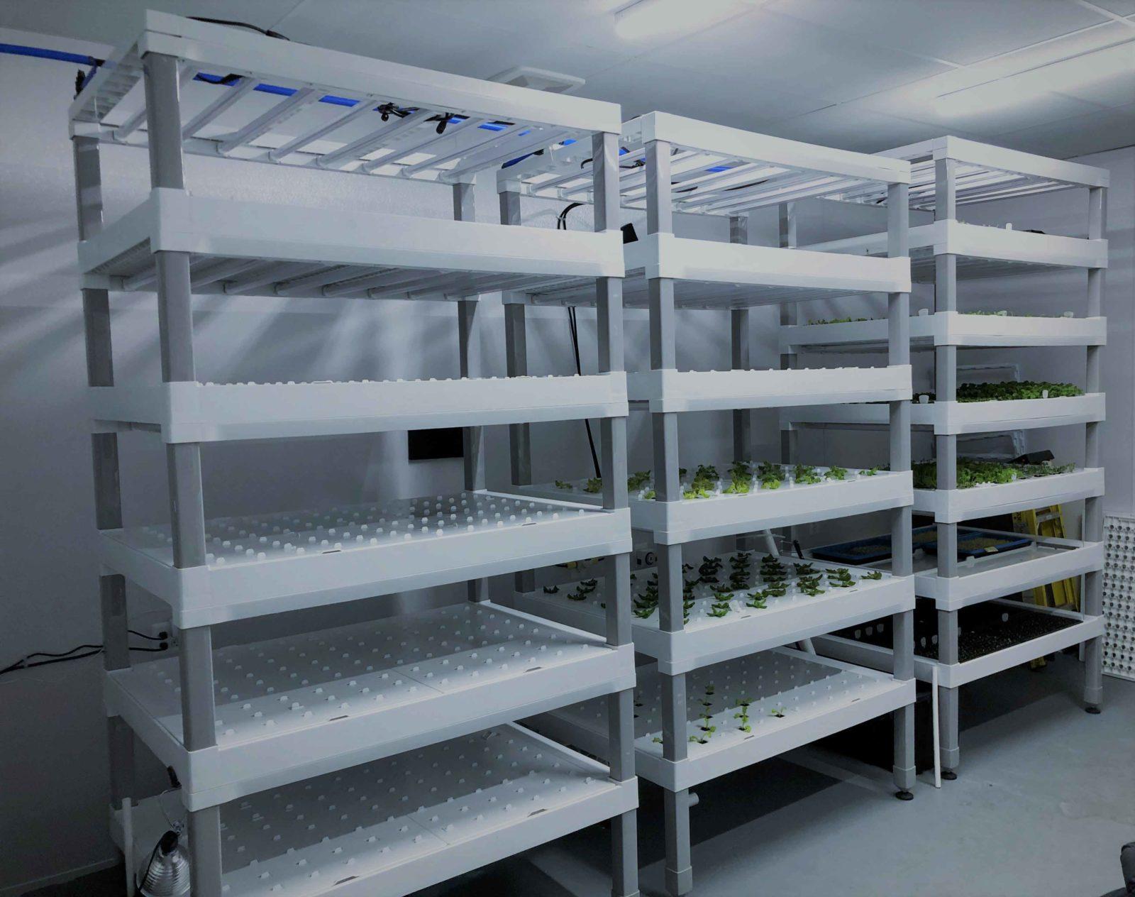 Vertical farm full operating growing racks
