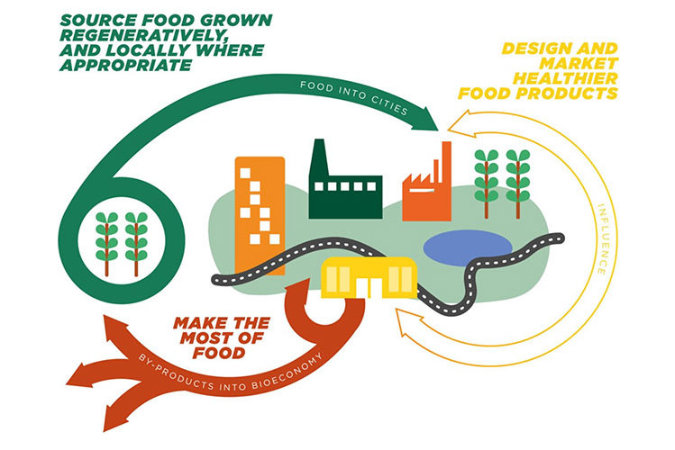 Local Food Systems Could Feed Us All—And Save the Planet